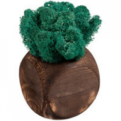 Декоративная композиция GreenBox Dice, бирюзовый