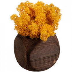 Декоративная композиция GreenBox Dice, желтый