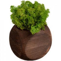 Декоративная композиция GreenBox Dice, зеленый