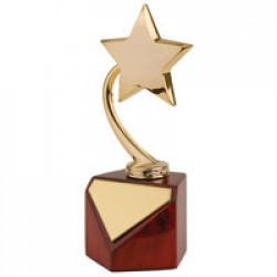 Стела «Звезда»