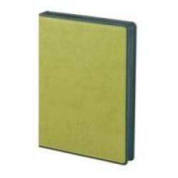 Ежедневник Freenote, недатированный, зеленый