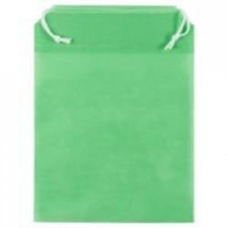 Пакет Smenka, зеленый